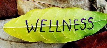 Wellness leaf